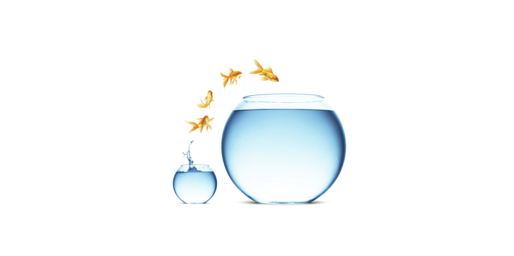 Verticle Leap Online Marketing
